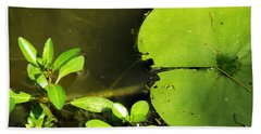 Lily Pad Beach Towel by Robyn King