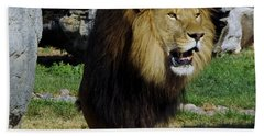 Lion 2 Beach Towel
