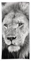 Lion King Beach Towel by Adam Romanowicz