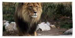 Beach Towel featuring the photograph Lion King by Ramabhadran Thirupattur