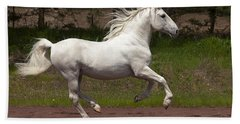 Beach Sheet featuring the photograph Lipizzan At Liberty D5809 by Wes and Dotty Weber