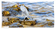 Little Blue Heron Beach Sheet