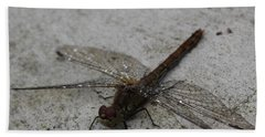 Little Dragonfly Beach Towel