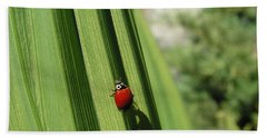 Ladybird Beach Towel by Cheryl Hoyle