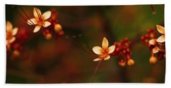 Little Red Flowers Beach Sheet by Bradley R Youngberg