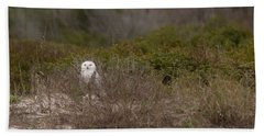Beach Towel featuring the photograph Little Talbot Snowbird by Paul Rebmann