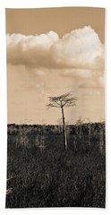 lone cypress III Beach Towel