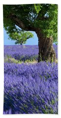 Beach Towel featuring the photograph Lone Tree In Lavender by Brian Jannsen