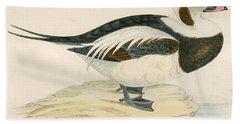 Long Tailed Duck Beach Towel