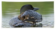 Loon Chick - Peek A Boo Beach Sheet