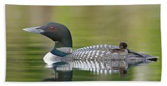 Loon Chick With Parent - Quiet Time Beach Sheet