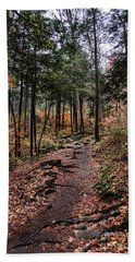 Beach Towel featuring the photograph Lost In Thought On The Blue Ridge Parkway Trail by Debbie Green