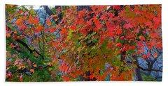 Lost Maples Fall Foliage Beach Sheet