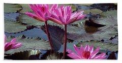 Lotus Flower Beach Towel by Sergey Lukashin