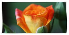 Louisiana Orange Rose Beach Towel