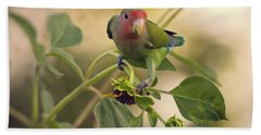 Lovebird On  Sunflower Branch  Beach Towel by Saija  Lehtonen