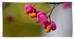 Lovely Colors - European Spindle Flower Seeds Beach Sheet