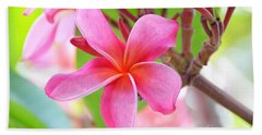 Beach Towel featuring the photograph Lovely Plumeria by David Lawson