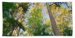 Low Angle View Of Red Pine Trees Beach Towel