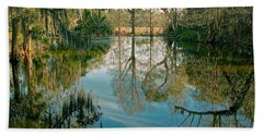 Low Country Swamp Beach Sheet