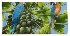 Macaw Parrots In Papaya Tree Beach Towel