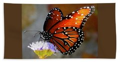 Macro Butterfly Beach Towel