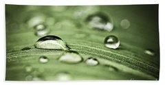 Macro Raindrops On Green Leaf Beach Towel