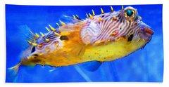 Magic Puffer - Fish Art By Sharon Cummings Beach Towel