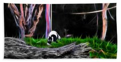 Walk In Magical Land Of The Black And White Ruffed Lemur Beach Sheet