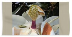 Magnolia Magnicence  Beach Sheet