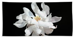 Magnolia Blossom Beach Sheet