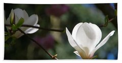 Magnolia Blossoms Beach Towel by Marilyn Wilson