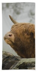 Majestic Highland Cow Beach Towel