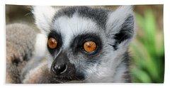 Malagasy Lemur Beach Towel by Sergey Lukashin