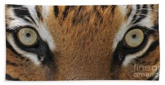 Malayan Tiger Eyes Beach Towel