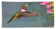 Male Broad-tailed Hummingbird Beach Towel