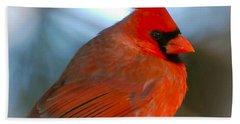 Male Cardinal  Beach Sheet by Kerri Farley