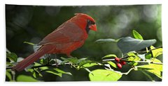 Male Cardinal On Dogwood Branch With Verse Beach Towel by Debbie Portwood