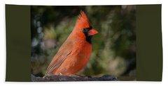 Male Northern Cardinal 3 Beach Towel