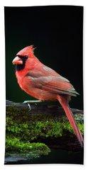 Male Northern Cardinal Cardinalis Beach Towel by Panoramic Images