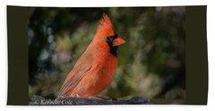 Male Northern Cardinal Beach Sheet