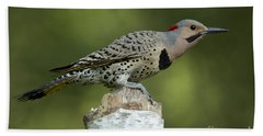 Male Northern Flicker Beach Towel