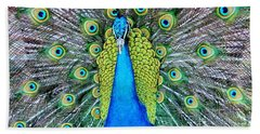 Male Peacock Beach Towel by Cynthia Guinn