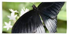 Male Scarlet Swallowtail Beach Towel by Denyse Duhaime