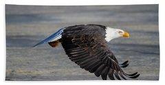 Male Wild Bald Eagle Ready To Land Beach Towel by Eti Reid