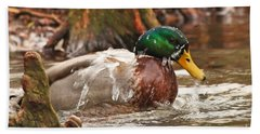 Mallard Duck Taking Bath Beach Towel