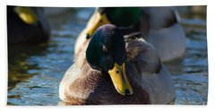 Beach Sheet featuring the photograph Mallard In The Morning Sun by Patrick Shupert