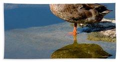 Mallard Reflection Beach Sheet