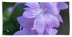 Mallow Blossoms Beach Sheet