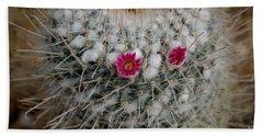 Beach Towel featuring the photograph Mammillaria Geminispina by Scott Lyons